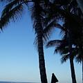 Oahu Beach by Dawn Marie Black
