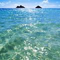 Oahu, Lanikai Beach by Carl Shaneff - Printscapes
