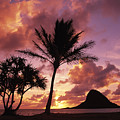 Oahu, Mokolii Island by Greg Vaughn - Printscapes