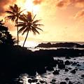 Oahu, North Shore by Bill Schildge - Printscapes
