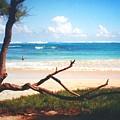 Oahu North Shore by Diane Merkle