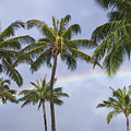 Oahu, Rainbow by Greg Vaughn - Printscapes