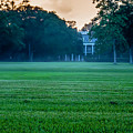 Oak Alley Plantation In Profile by Chris Coffee