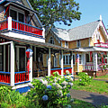 Oak Bluffs Gingerbread Cottages 1 by Mark Sellers