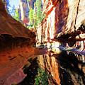 Oak Creek Canyon 1 by Michael L McKinley