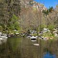 Oak Creek View by Bonnie Follett
