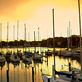 Oak Point Harbor by Brian Wallace