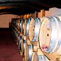 Oak Red Wine Barrels by Donna Proctor