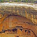 Oak Tree House - Mesa Verde by Glenn W Smith
