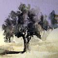 Oak Tree by Steven Holder