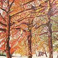 Oak Trees In The Park by Valentine Magutsa
