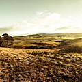 Oatlands Rolling Hills by Jorgo Photography - Wall Art Gallery