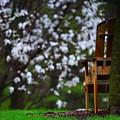 Observation Chair by David Christiansen