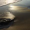 Ocean Beach  by Viktor Savchenko