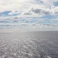 Ocean Breeze by Robert Smith