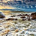 Ocean by Dorothy Binder