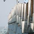 Ocean Pier by Rob Hans