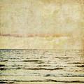 Ocean Scene by Brandi Fitzgerald