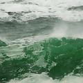 Ocean Spray by Donna Blackhall