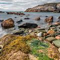 Ocean Stones by Adrian Evans