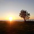 Ocean Sunset by Karen Young