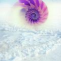 Ocean To Infinity by Georgiana Romanovna