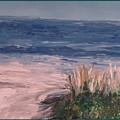 Ocean Trail by Eric  Schiabor