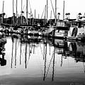 Oceanside Harbor by Misty Tienken