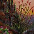Ocotillo At Sunset by Frances Marino