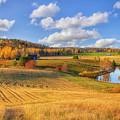 October Countryside 3 by Veikko Suikkanen