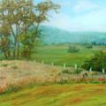 October Hills In Middletown Md by Nancy Heindl