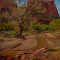 October In Zion by Tim Bryan