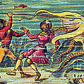 Octopus Attack, 1900s French Postcard by Science Source
