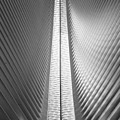 Oculus 2 by Rand