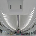 Oculus World Trade Center Wtc Transportation Hub by Susan Candelario