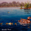 Odd Duck Out by Brenda Thour