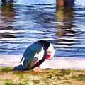 Odd Looking Duck In Swansboro Nc by Jeelan Clark