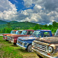 Odd Man Out Fords And Friend  by Reid Callaway
