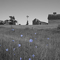 Odell Farm Iv by Dylan Punke