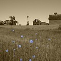 Odell Farm V by Dylan Punke