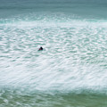 Off To Catch A Wave by Tony Higginson