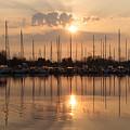 Of Yachts And Cormorants - A Golden Marina Morning by Georgia Mizuleva