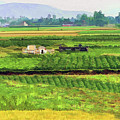Off The Beaten Track Vietnam Viewed Through Train Window Filters  by Chuck Kuhn