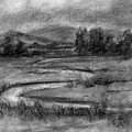Ogden Valley Marsh Study by David King