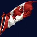 Oh Canada by Al Bourassa