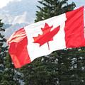 Oh Canada by Sylvia Wanty