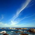 Oh The Beauty  Monterey Peninsula Ca  by Joyce Dickens