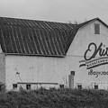 Ohio Bicentennial Barn  by John McGraw