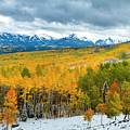 Ohio Pass Road In Full Fall Color And Snow by Teri Virbickis