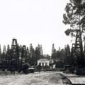 Oil Field Residential Los Angeles C. 1901 by Daniel Hagerman